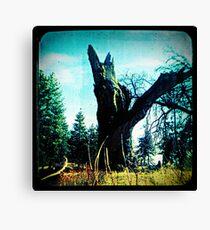 Ttv: Tree Dead Center Canvas Print
