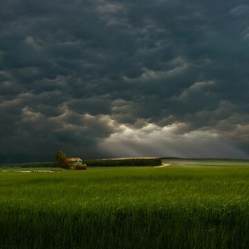 Before The Storm by ARGO