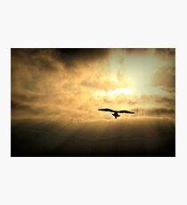 White Light Sunrise  Photographic Print