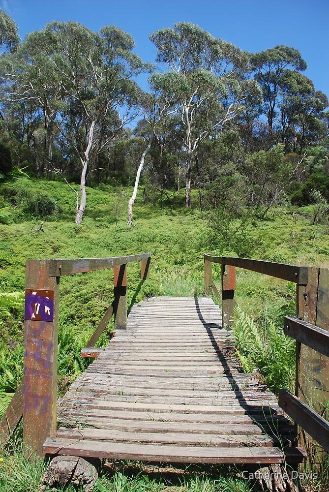 Bridge on the Charles Darwin Walk to Wentworth Falls by Catherine Davis