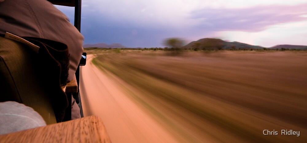 Savannah speed by Chris  Ridley