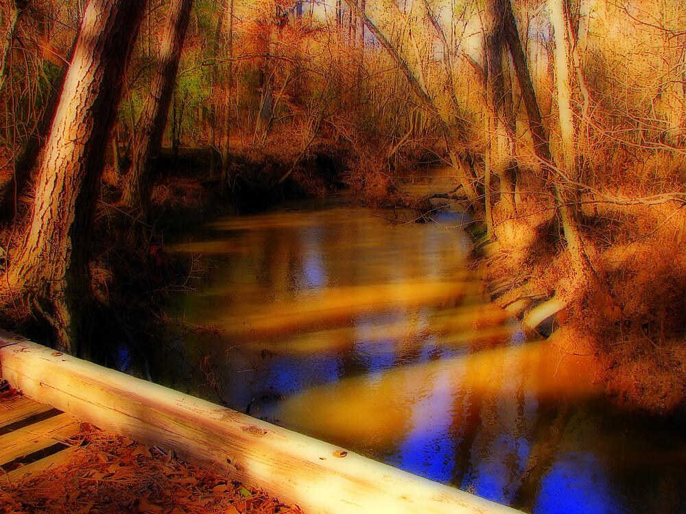 Crossing the Wooden Bridge by DottieDees