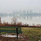 City Fog by LizzieMorrison