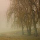 Pink fog by Cricket Jones
