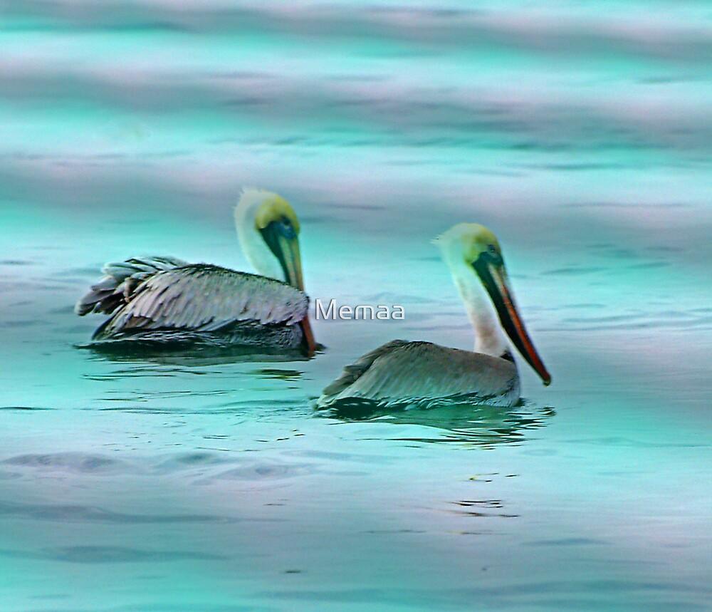 Pelican Ripple by Memaa
