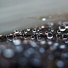 Raindrops on Feathers by lindsycarranza