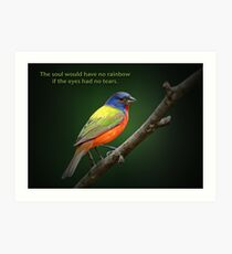 The soul would have no rainbow . . . Art Print