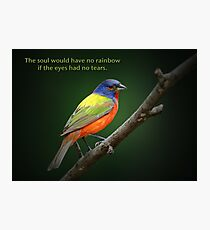 The soul would have no rainbow . . . Photographic Print