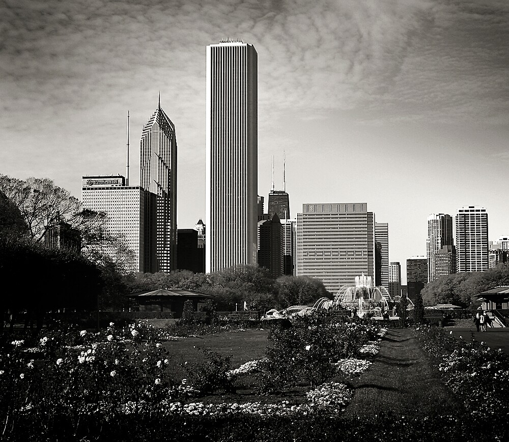 Chicago Skyline from Grant Park, 2004 by Jerry Carpenter