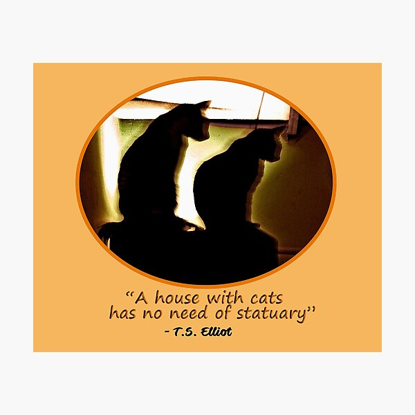 Two Cats in Sillouette Photographic Print