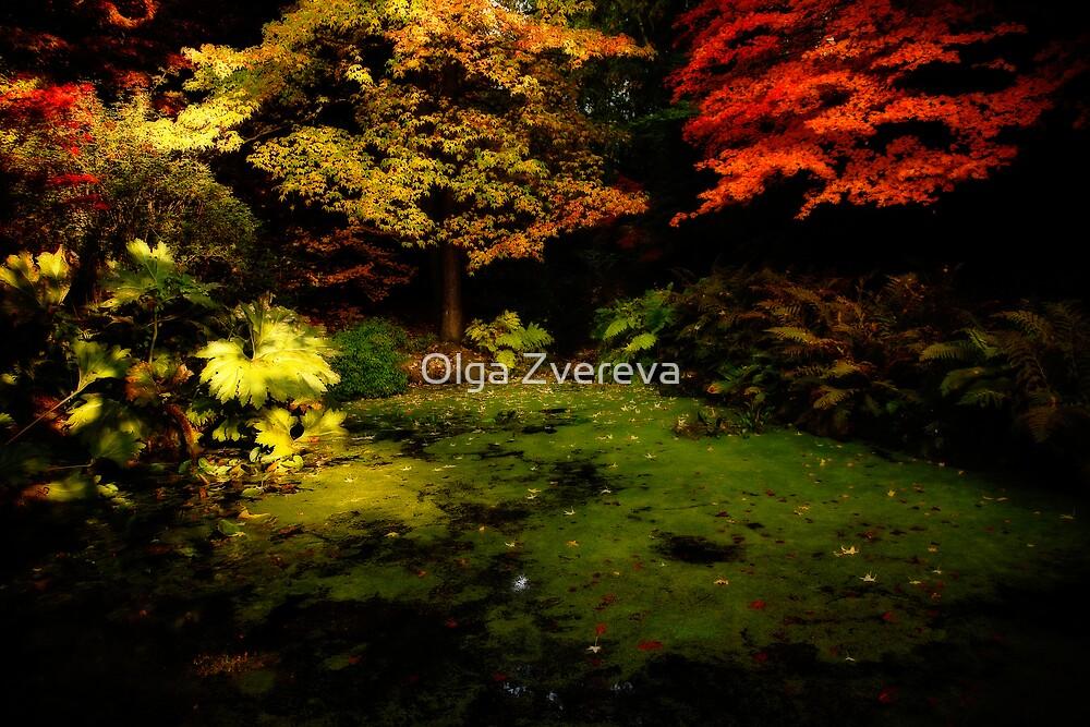 Fall Colour by Olga Zvereva