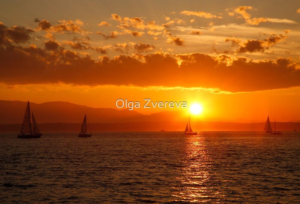 Under the Sails by Olga Zvereva