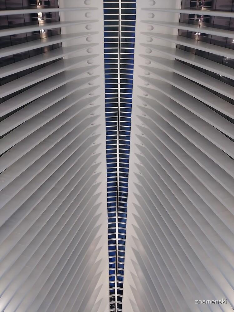 Street, City, Buildings, Photo, Day, Trees, New York, Manhattan, Brooklyn by znamenski