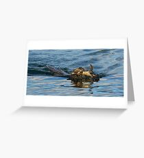 Otter swimming with crab Greeting Card