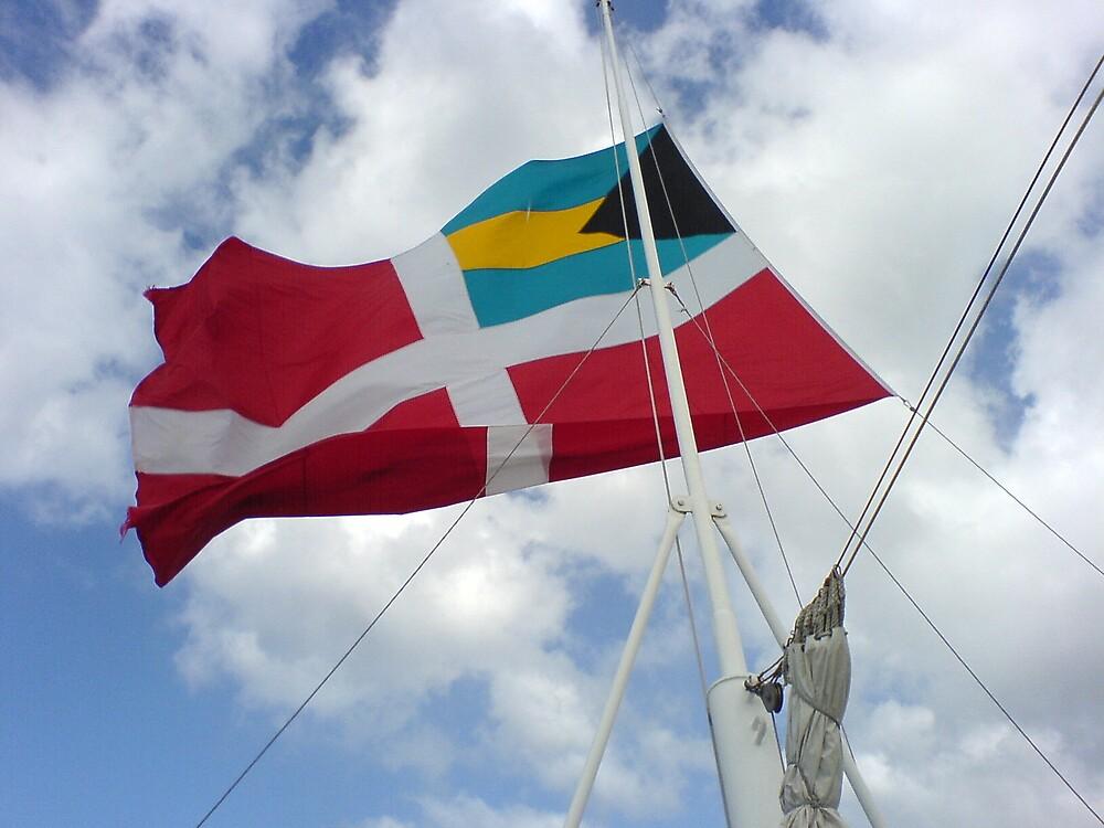Flag by Diane Ball