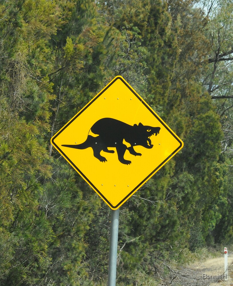 Caution: Tasmanian Devils! by BonnieH