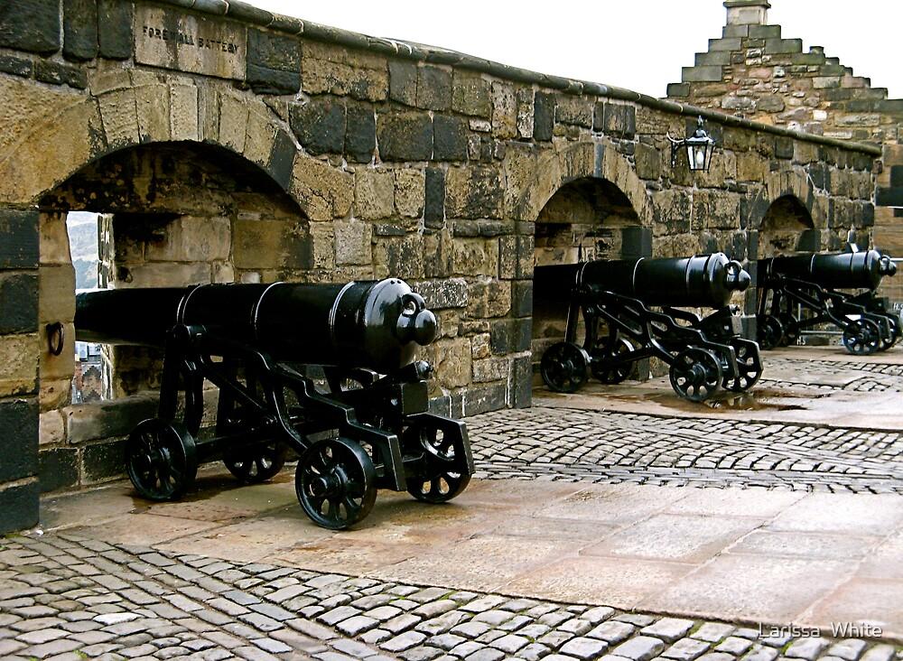Fortress Defense by Larissa  Plain