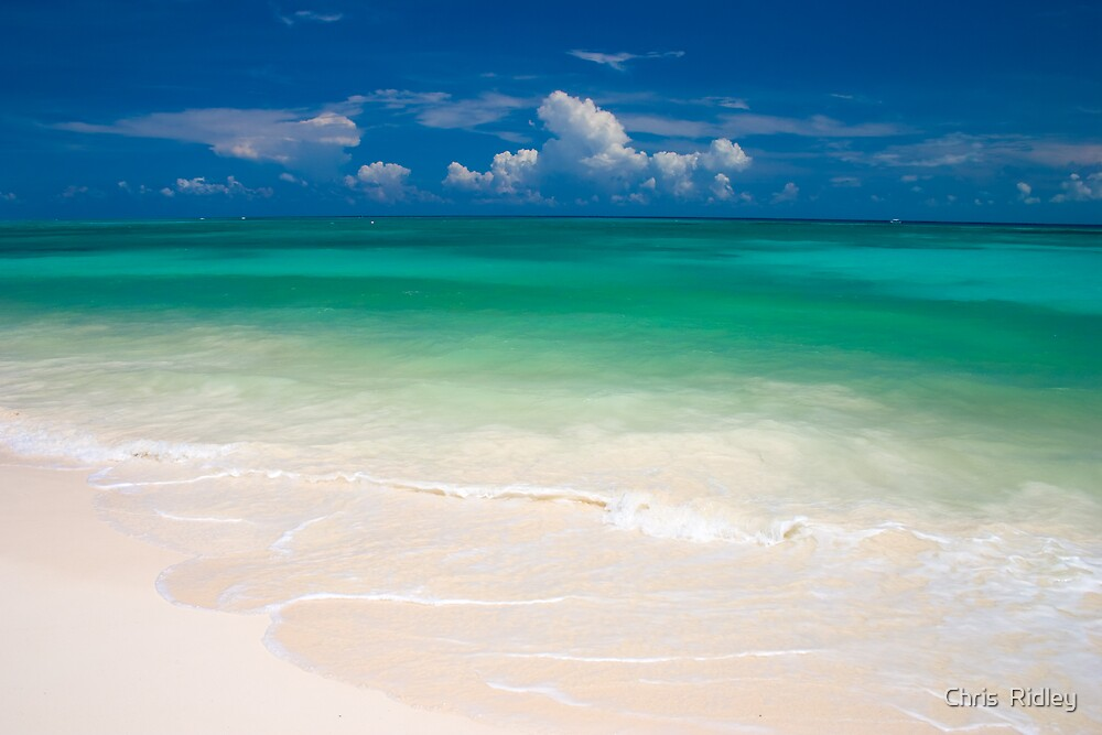 Paradise Beach - Mexico by Chris  Ridley