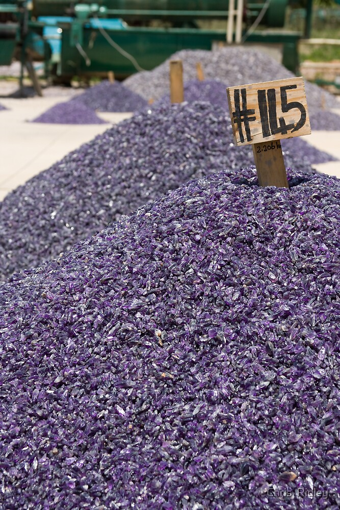 Huge Amethyst Mounds by Chris  Ridley