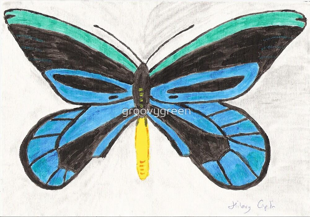 Beautiful Butterfly by groovygreen