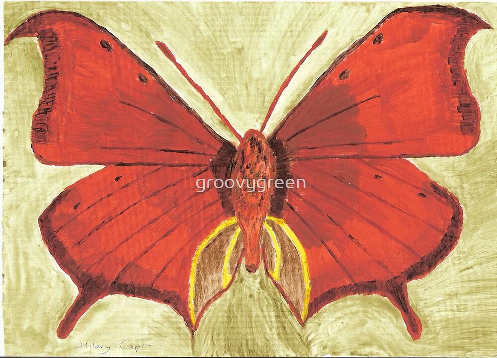 Beautiful Butterfly 2 by groovygreen