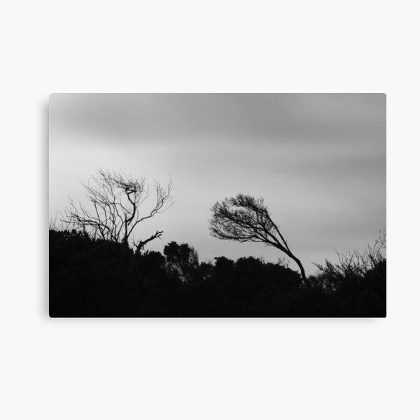 Grey day in Bicheno Canvas Print