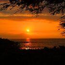 Wailea Sunset - Maui, Hawaii by Barb White