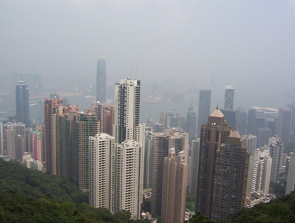 Hong Kong by Diane Ball