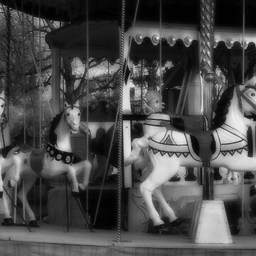 Carousel by Stormswept