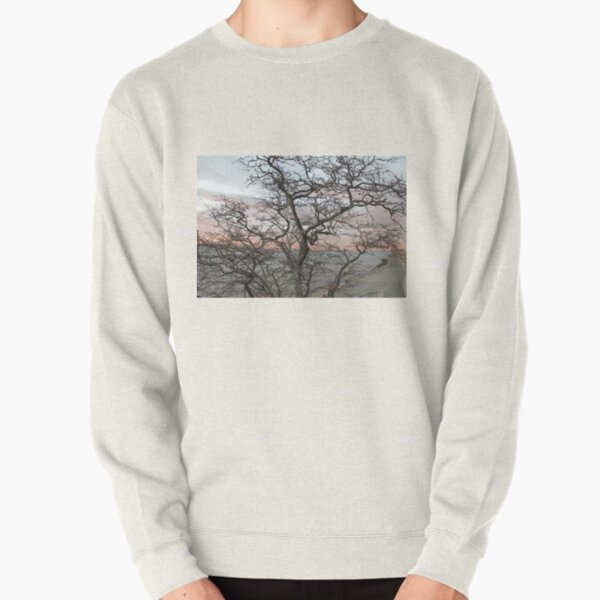 Sunset, pink clouds, exotic curved branches of a tree, beautiful view Pullover Sweatshirt
