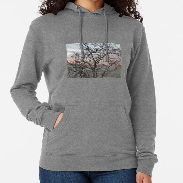 Sunset, pink clouds, exotic curved branches of a tree, beautiful view Lightweight Hoodie