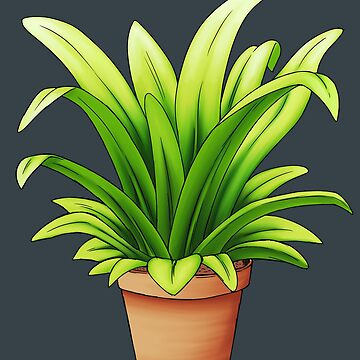 Pot Plant by Rennis05