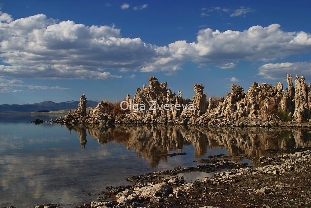 Mono Lake Tufa by Olga Zvereva