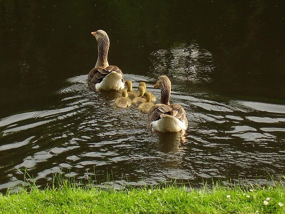 My Family by tonymm6491