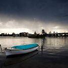 Storm Chasing, The Entrance by Matt  Lauder
