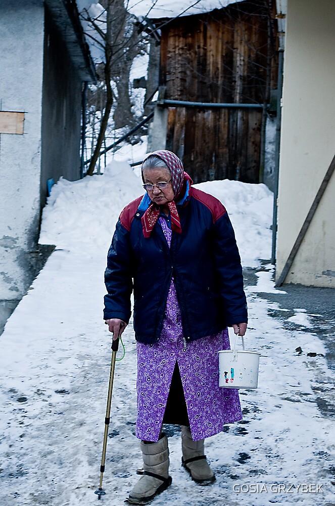 Inhabitant of the Alps by GOSIA GRZYBEK