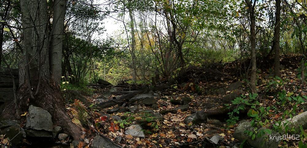 Metcalfe Park by krys8462