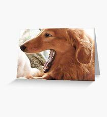 Goldie Yawn Greeting Card