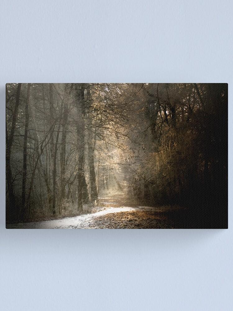 Alternate view of Last snow? Canvas Print
