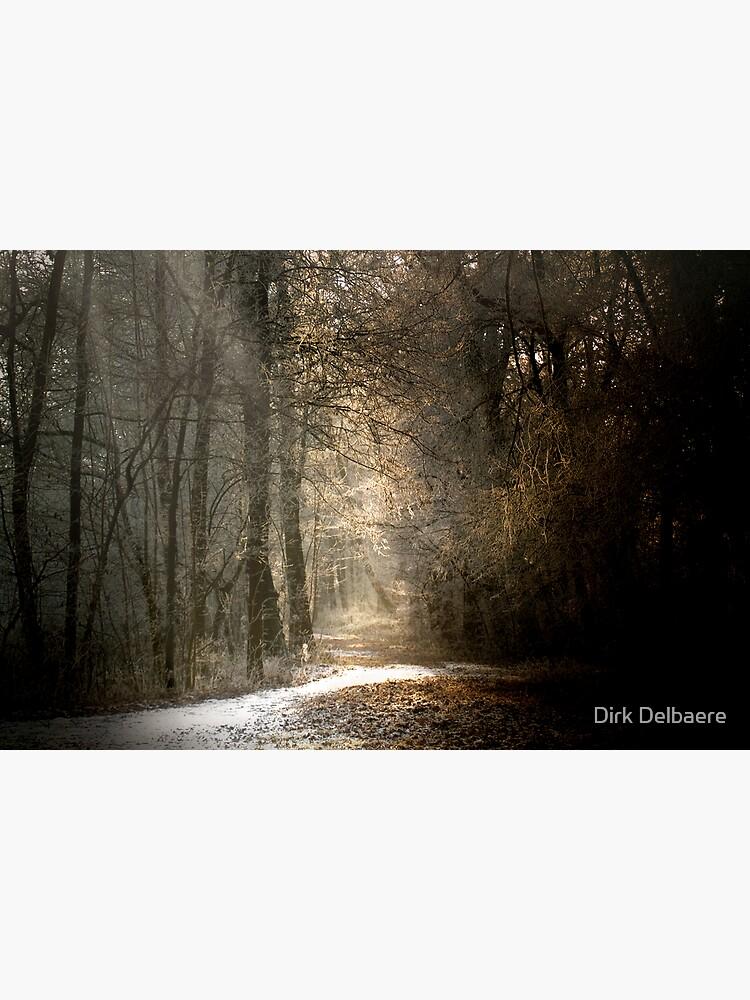 Last snow? by Delbaere