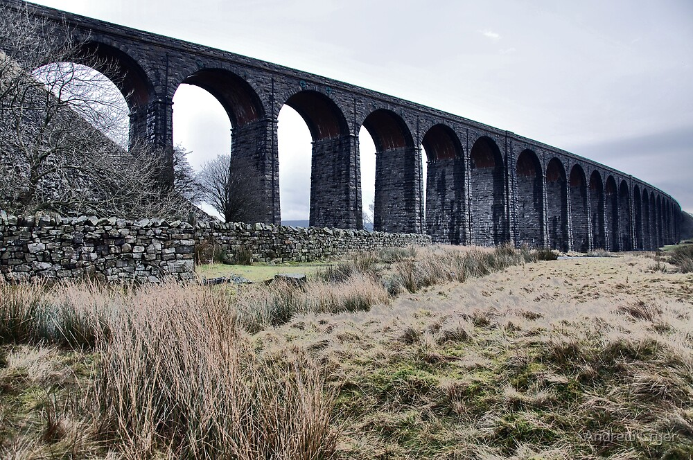 Ribblehead Viaduct by Andrew Cryer