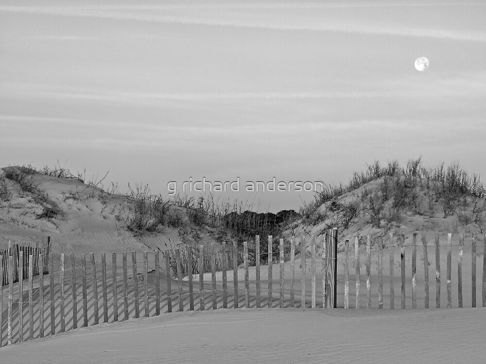 Dunes and Moon by g richard anderson