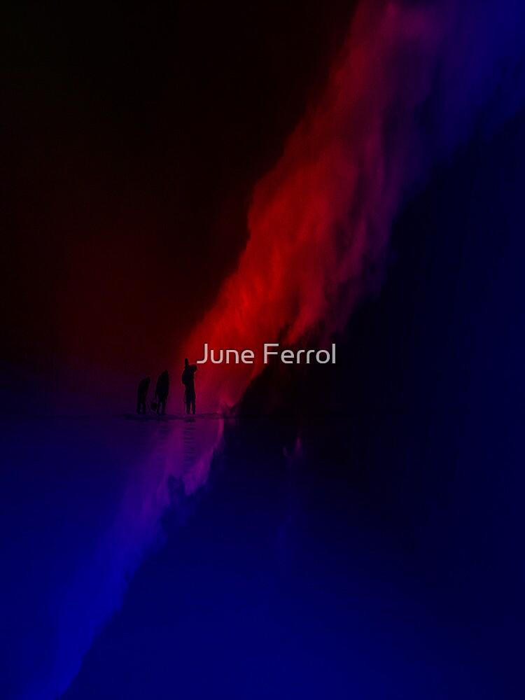 THREE by June Ferrol