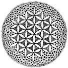 Dotted flower of life mandala by tekslusdesign