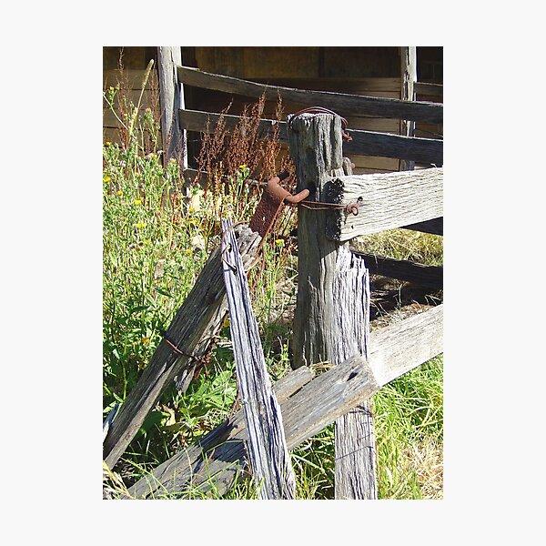 Fencepost Photographic Print