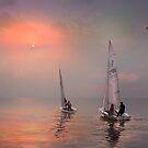 Sun Followers by Igor Zenin