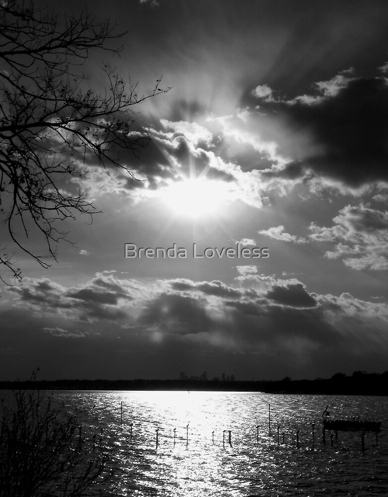 November's End, b&w by Brenda Loveless
