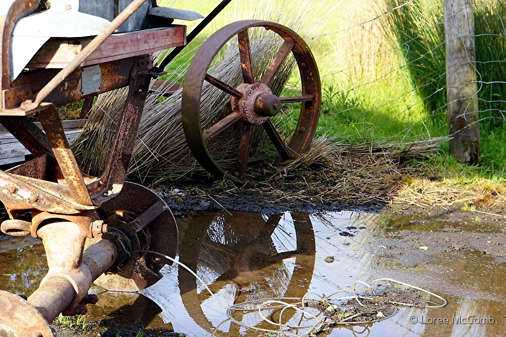Rode Hard & Put Away Wet by © Loree McComb