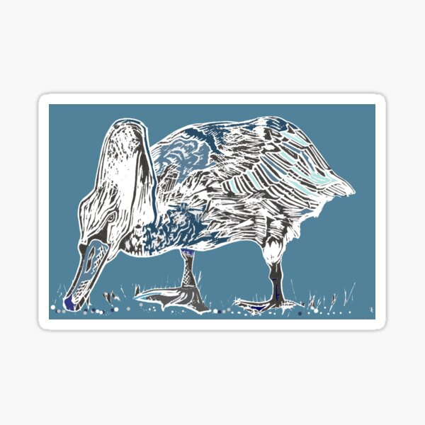 Swan lino cut Tamar blue Sticker