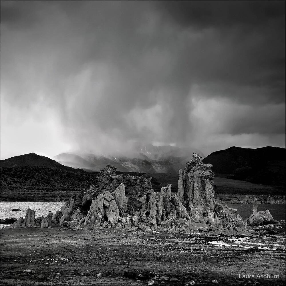 Drifting Clouds by Laura Ashburn